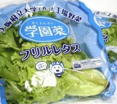 大阪府立大学「学園菜」