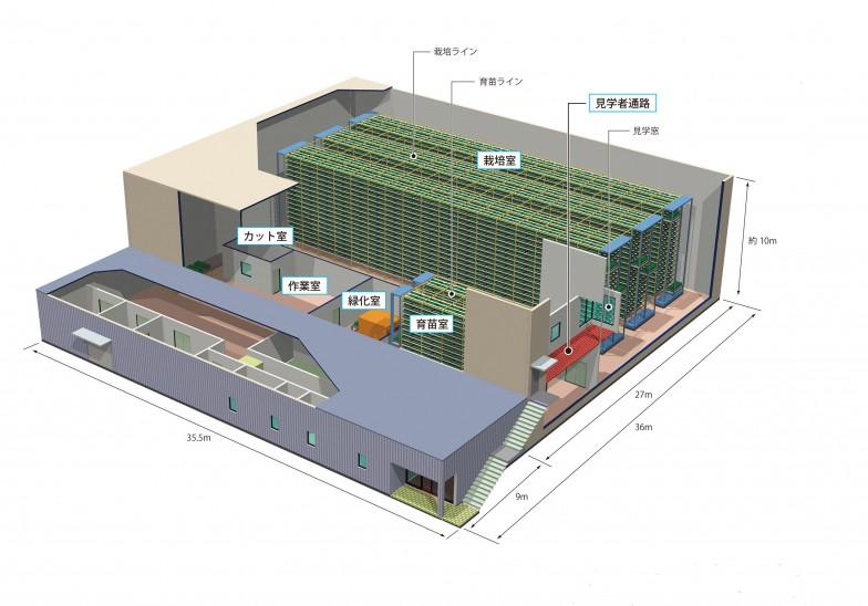 植物工場内部