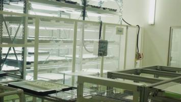 世界初の技術「苗診断ロボット」
