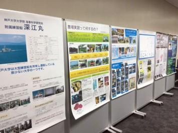 ズラリと並ぶのは神戸大の研究成果をまとめたポスター