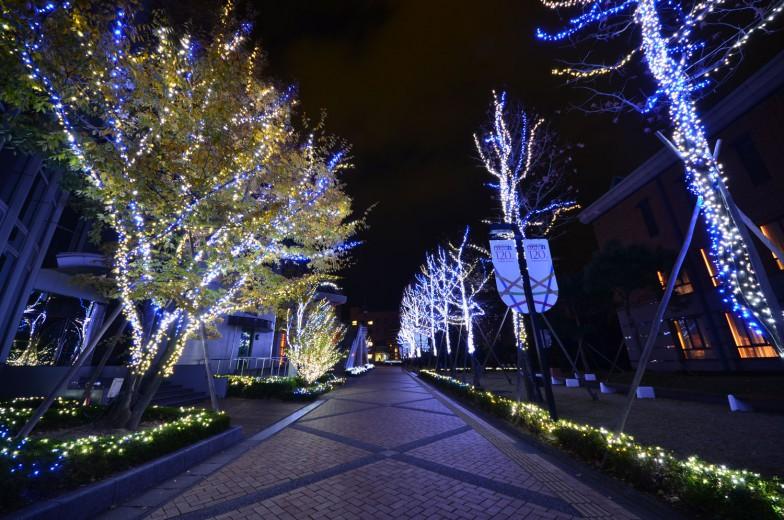 徳島文理大学の「文理ナリエ」。35万個のLEDでキャンパスが輝く姿は圧巻。開催期間:2015年12月3日(木)~2016年2月14日(日)