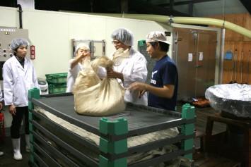 麹を運び出す作業を指導する内炭さんは、実は「酒づくりプロジェクト」がきっかけで招徳酒造に就職した佛教大学の卒業生