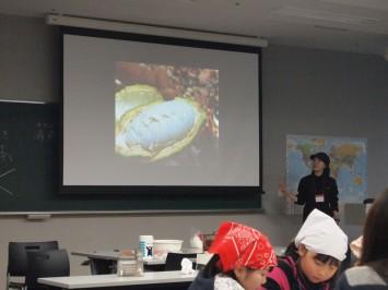 カカオを割ると白い実が。中にあるカカオの種(カカオ豆)を発酵させる