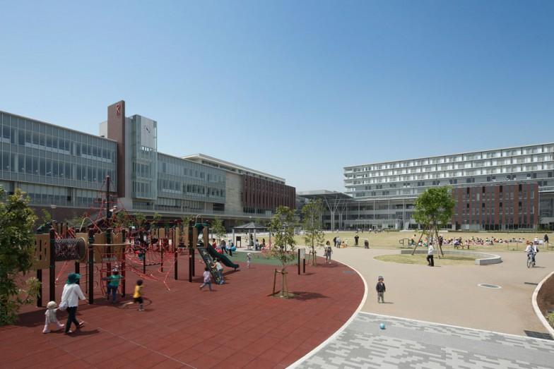 立命館大学大阪いばらきキャンパス。校舎の裏手に「育てる里山」エリアがある
