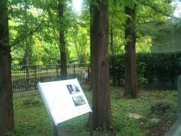 田中記念館の側に設置されている看板は「メタセコイアと文化創造」の著者である岡野 浩氏と塚本 実氏が執筆