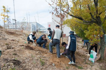 まだまだ細い木が多いが、参加者の努力が少しずつ実る