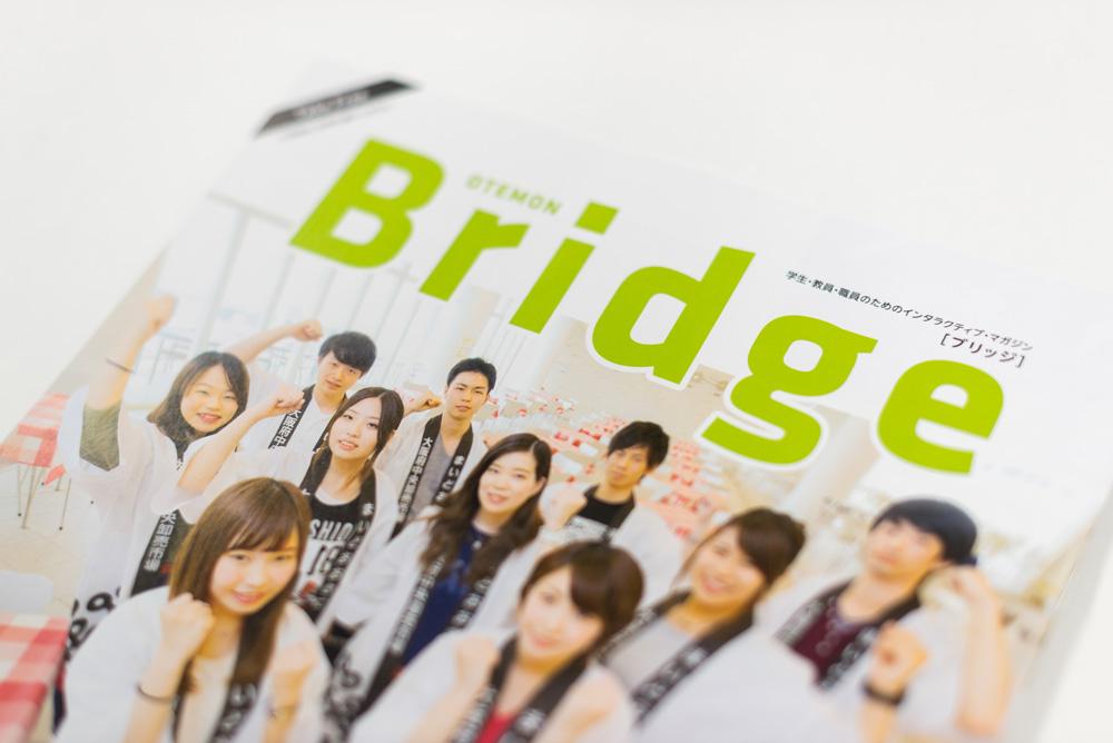 bridge_media