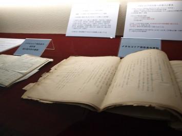 メタセコイアの普及に尽力したメタセコイア保存会の資料