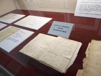 メタセコイア保存会の会計資料。細かな字でびっちりと書かれています。几帳面さがうかがえます…。