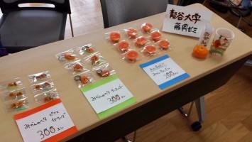 京都手作り市へ出店したアクセサリー