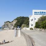 京都大学白浜水族館3