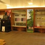 東京大学 農学資料館2