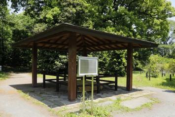 江戸時代、小石川養生所で使われていた井戸は水質もよく、水量も豊富で今も現役とか。関東大震災の際には飲料水として使用されたそうです