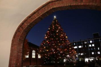 戦後間もない1949年ごろに始まったクリスマスイルミネーション。約1000個の電球で飾られるヒマラヤ杉は1920年ごろに植樹されたもの。訪れる人々の心を温めてくれます。