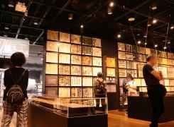【日本初公開アリ】15人の昆虫学者が集めた東京大学総合研究博物館「珠玉の昆虫標本」レポート