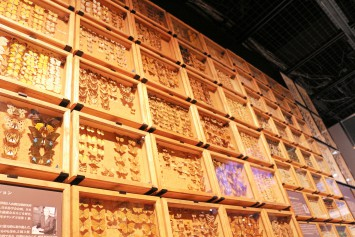 天井までビッシリと並べられた標本箱