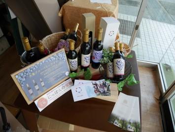 こちらは、高知県大豊町でつくられたブルーベリーワイン。高知大生も生産に関わっており、2018年に行われたコンテスト「にっぽんの宝物高知大会」では好評だったとのこと。インターネットでも購入可能