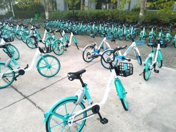 キャンパス内のシェア自転車。日本の大学では見かけない光景