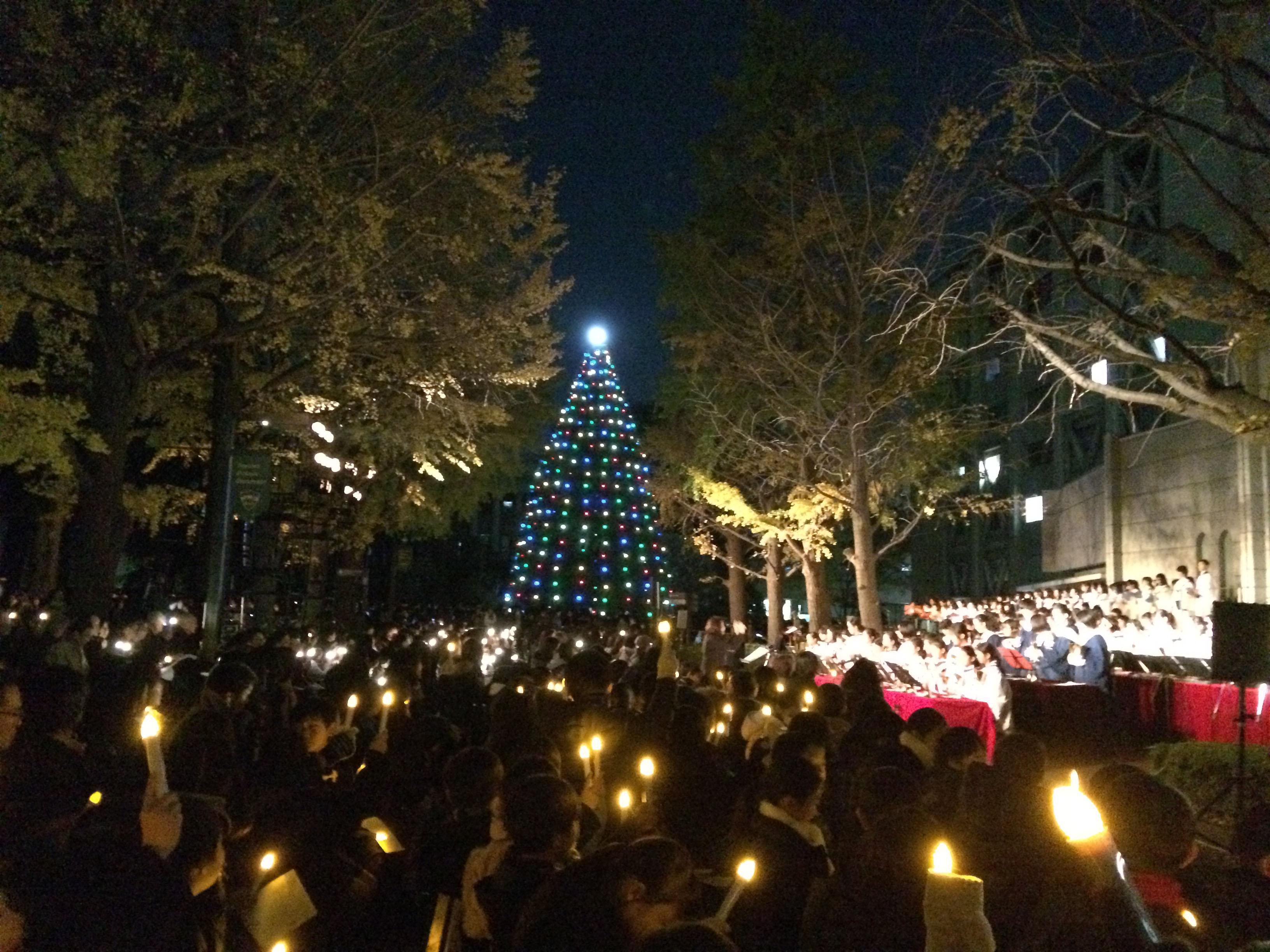 参加者たちが掲げる光とともに会場に喜びが広がった