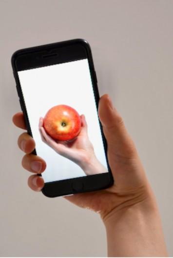 私たち人間は、視覚情報と触覚情報を同時に得ると、無意識の内に両者を関連づけて解釈しようとする能力があります。手の感覚(触覚情報)と、リンゴをキャッチした映像(視覚情報)をつなげて、自分がリンゴを受け止めたような気持ち(身体表象)を生み出しているんです。奥が深いです。
