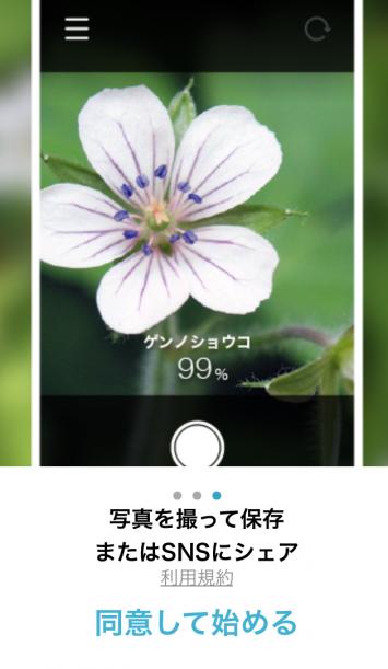 さらにスライドすると、この画面に。写真を撮って保存あるいはSNSなどにシェアもできます