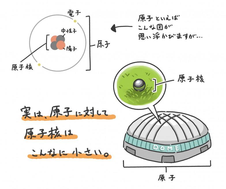 原子が東京ドームだとすると、原子核はパチンコ玉ほどの大きさ。しかし原子の質量のほとんどを占める