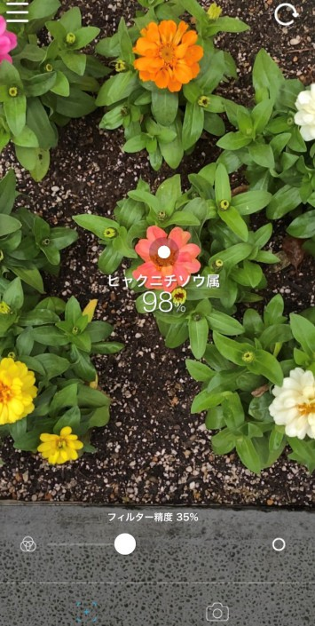 """サーチモードには判定の精度を測るフィルター精度のスライダーが搭載されています。これは、人工知能(AI)が認識する花の名前の判定の""""正確度""""であり、認識する花によっては精度によって判定結果が変わることもありました。あえて精度を低くすると判定の範囲が広がり、正確さは低いけれど似ている花の名前が挙がってくるのがおもしろい!"""
