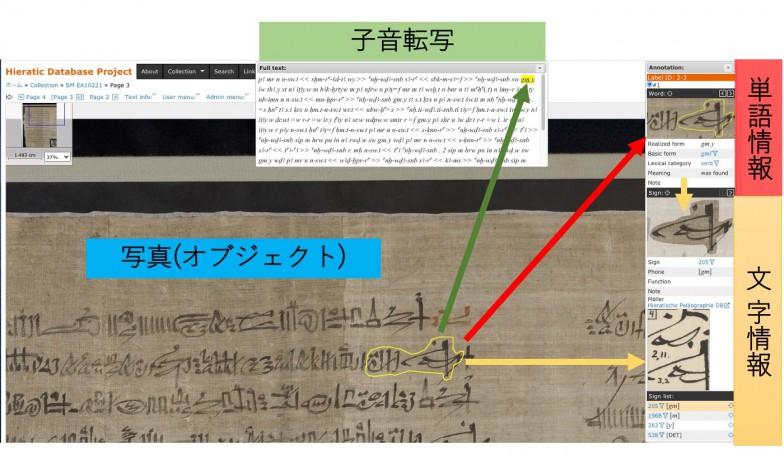 「Hieratic Database Project」の画面。原資料の写真に子音転写、文字、単語といった付加情報が紐づけられている。膨大な情報の入力作業はもちろんすべて人力だ