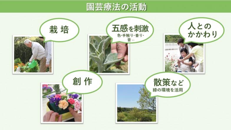 写真提供(「栽培」の写真): NPO法人 園芸療法と歩む会