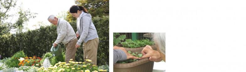 写真提供(上左): NPO法人 園芸療法と歩む会