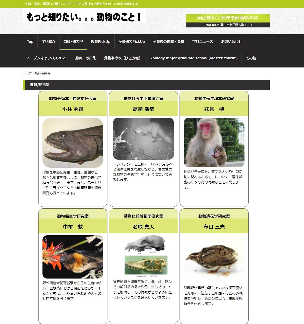 okayamarikau_top (2)